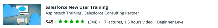 Salesforce New User Training